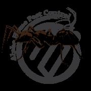 Feild-Ant